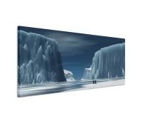 Penguins In Antarctica 150x50cm