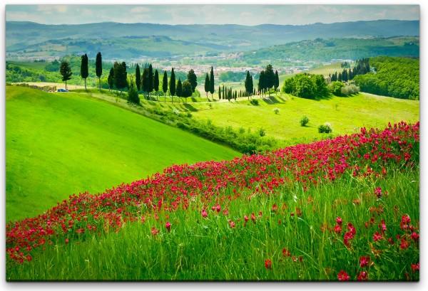 Berg mit roten Blumen Wandbild in verschiedenen Größen