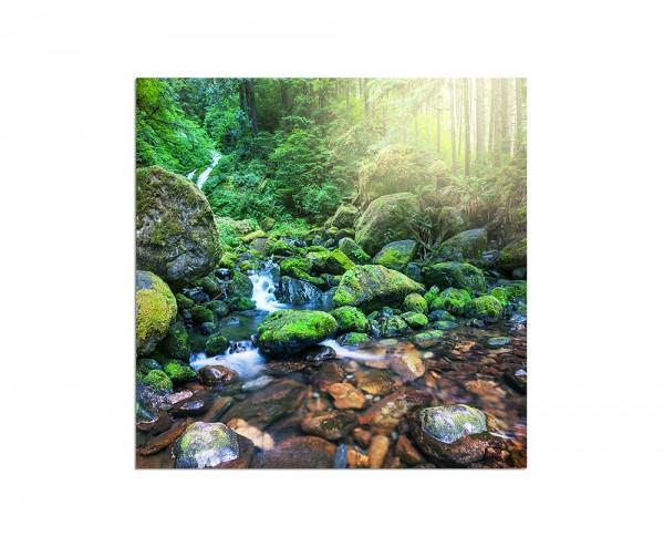 80x80cm Wald Fluss Bach Steine Natur