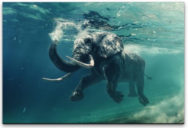Elefant unter Wasser Wandbild in verschiedenen Größen