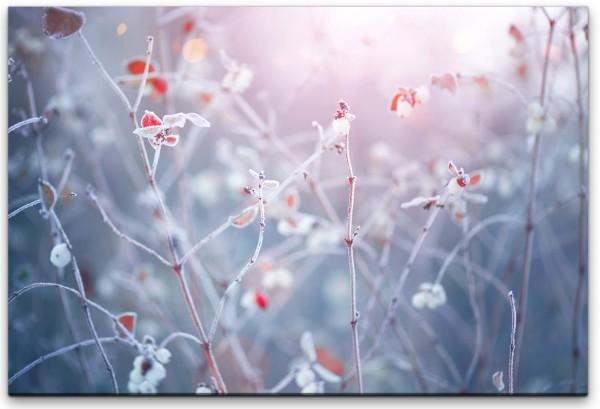Winter Natur Hintergrund Wandbild in verschiedenen Größen