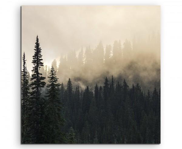 Landschaftsfotografie –  Nebel im Tannenwald auf Leinwand exklusives Wandbild moderne Fotografie für