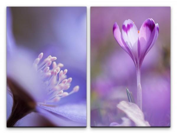 2 Bilder je 60x90cm Blumen Blüten Sanft Zart Duftend Dekorativ Fotokunst
