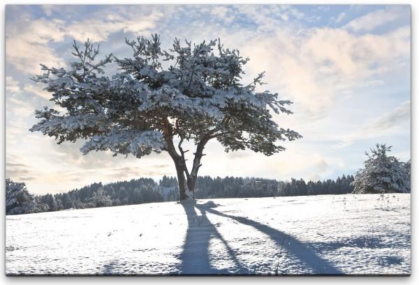 Baum im Winter Wandbild in verschiedenen Größen