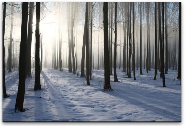 Wald Wandbild in verschiedenen Größen