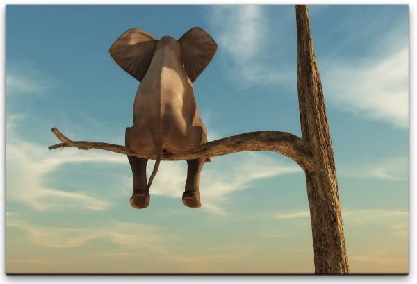 Elefant auf einem Baum Wandbild in verschiedenen Größen