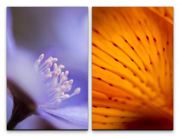 2 Bilder je 60x90cm Blumen Blüten Orange Warm Sommer Dekorativ Makrofotografie