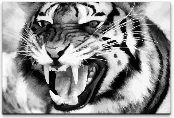 Tiger in schwarz weiß Wandbild in verschiedenen Größen