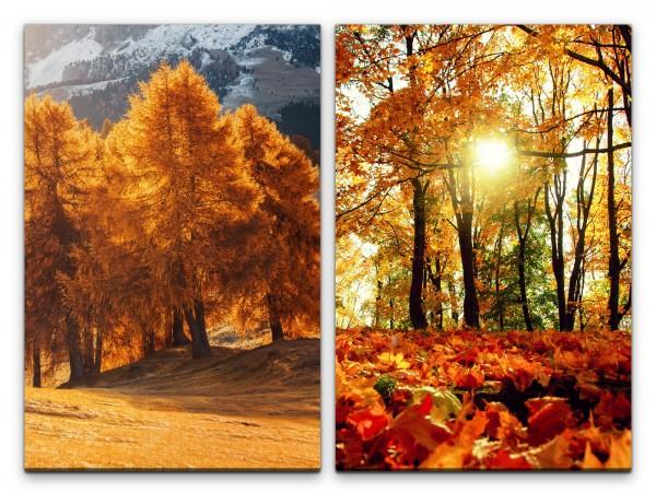 2 Bilder je 60x90cm Bäume Herbst Laub Sonnenstrahlen warmes Licht Heilsam Erholsam