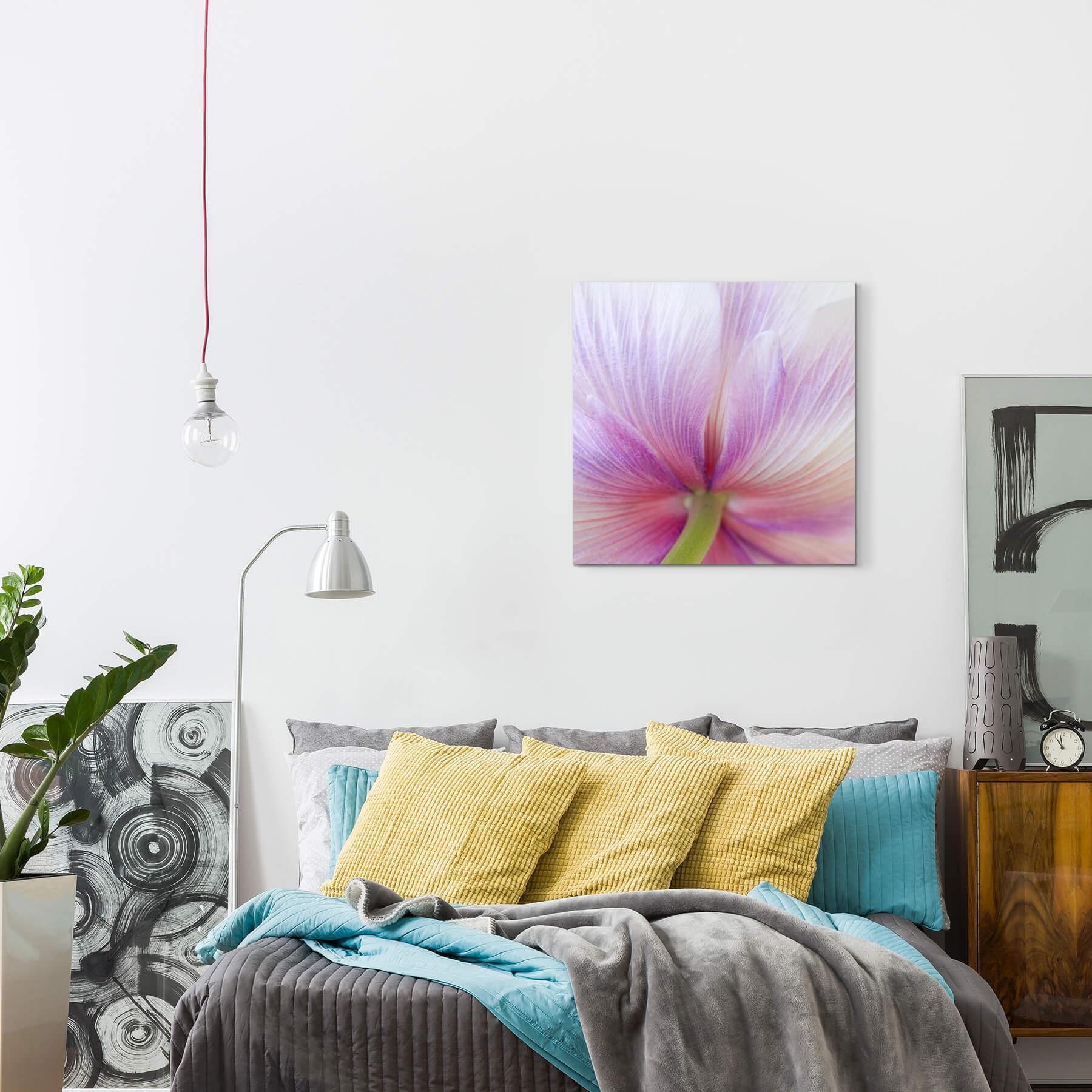Fotografia macro una TULIPANO-rosa e Bianco-Tela Bianco-Tela Bianco-Tela c0e3e4