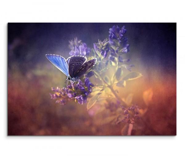 120x80cm Wandbild Schmetterling Blume Wiese vintage grunge