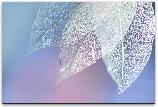 Blätter in weiß Wandbild in verschiedenen Größen