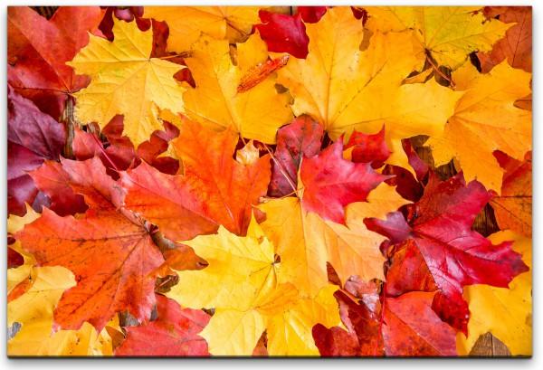 Herbstblätter Wandbild in verschiedenen Größen