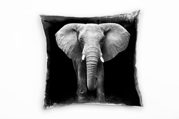 Tiere, schwarz, weiß, Elefant im Gehen von vorne Deko Kissen 40x40cm für Couch Sofa Lounge Zierkisse