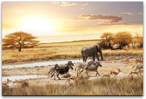 Landschaft Afrika Wandbild in verschiedenen Größen