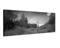 150x50cm Wald Bäume Büsche Nacht Mond Sterne