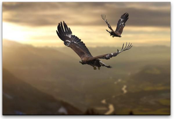 Adler in einer Gebirgslandschaft Wandbild in verschiedenen Größen