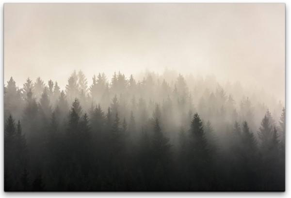 Wälder im Nebel Wandbild in verschiedenen Größen