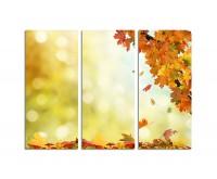 130x90cm schönes buntes Herbstlaub
