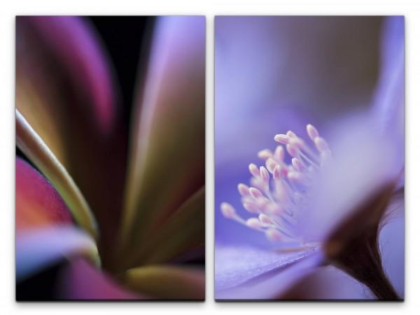 2 Bilder je 60x90cm Blumen Blüten Nahaufnahme Kunstvoll Dekorativ Sanft Weich