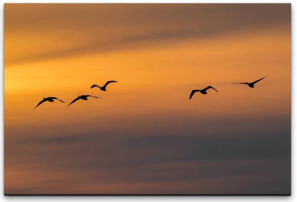 Vögel im Himmel Wandbild in verschiedenen Größen