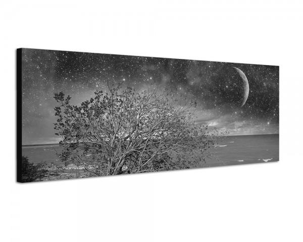 150x50cm Meer Küste Busch Nacht Sterne Mond