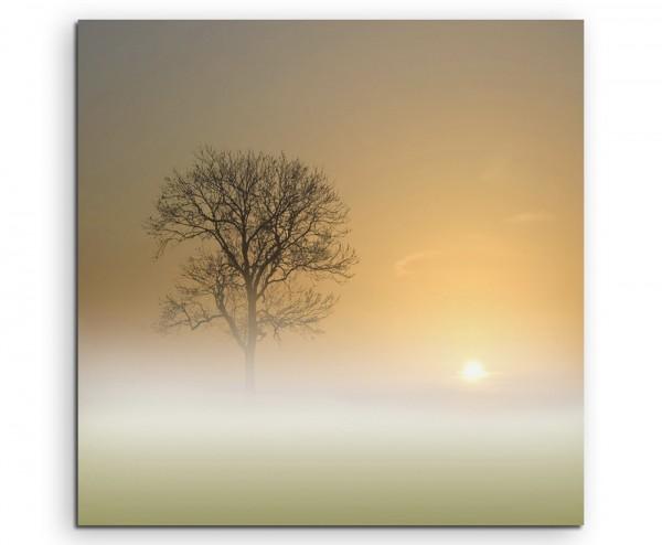 Landschaftsfotografie – Nebelige Landschaft bei Sonnenaufgang auf Leinwand
