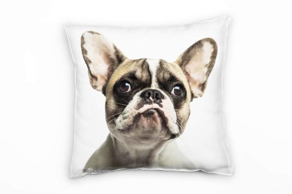 Tiere, braun, weiß, Bulldogge, Portrait Deko Kissen 40x40cm für Couch Sofa Lounge Zierkissen