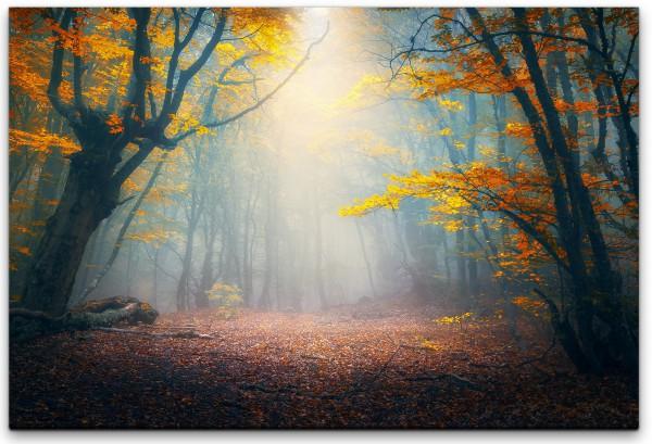 Herbstwald Wandbild in verschiedenen Größen