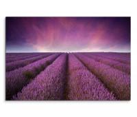 120x80cm Wandbild Lavendel Feld Sonnenuntergang