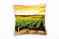 Landschaft, orange, grün, Weinstöcke, Sonnenuntergang Deko Kissen 40x40cm für Couch Sofa Lounge Zier