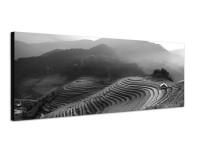 150x50cm Vietnam Reisfelder Terrassen Morgenlicht