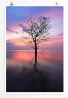 60x90cm Poster Landschaftsfotografie – Baum bei Sonnenaufgang