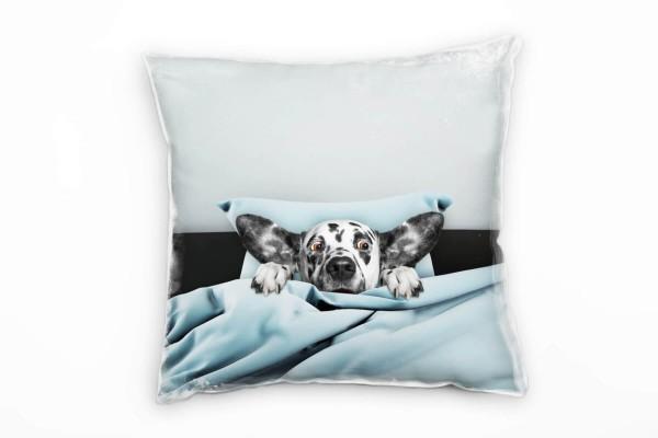 Tiere, Hund im Beet, blau, grau Deko Kissen 40x40cm für Couch Sofa Lounge Zierkissen