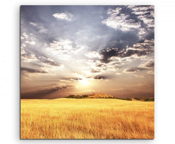 Landschaftsfotografie – Gold gelbes Weizenfeld im Sonnenschein auf Leinwand