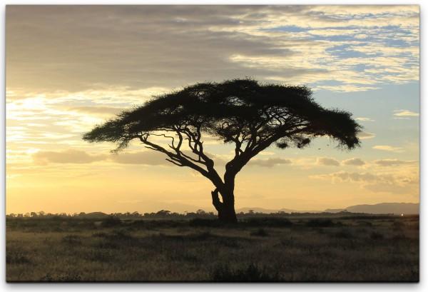 Baum in Wildnis Wandbild in verschiedenen Größen