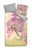 Orchidee Blte Nahaufnahme Grn Lila Bettwäsche Set 135x200 cm + 80x80cm  Atmungsaktiv