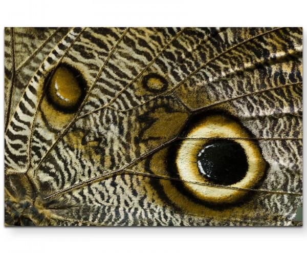 Makrofotografie – tropischer Schmetterlingsflügel - Leinwandbild