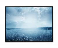 105x75cm Leinwandbild Petrol Blumenwiese Sonnenschein