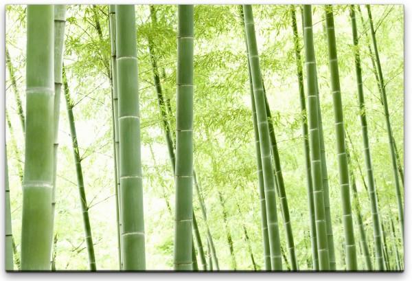 Bambus Wald Wandbild in verschiedenen Größen