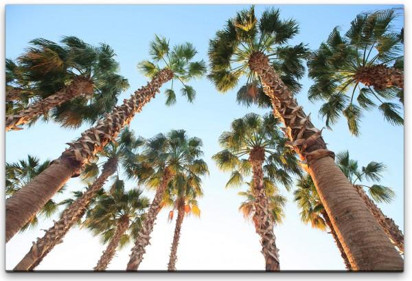 Tropische Palmen Wandbild in verschiedenen Größen
