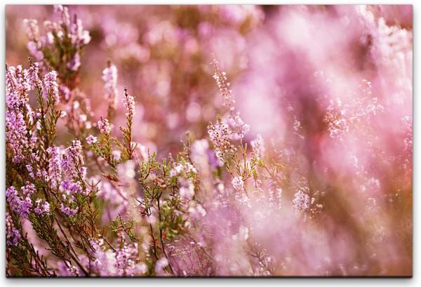 blühende Blumen Wandbild in verschiedenen Größen