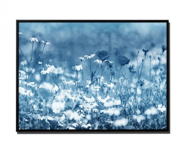 105x75cm Leinwandbild Petrol Wildblumenwiese im Frühling