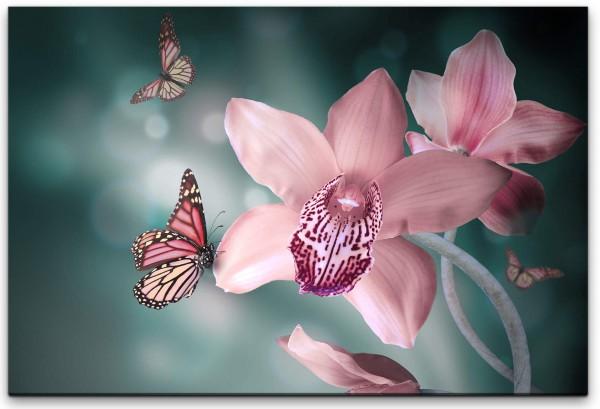 Blume mit Schmetterling Wandbild in verschiedenen Größen
