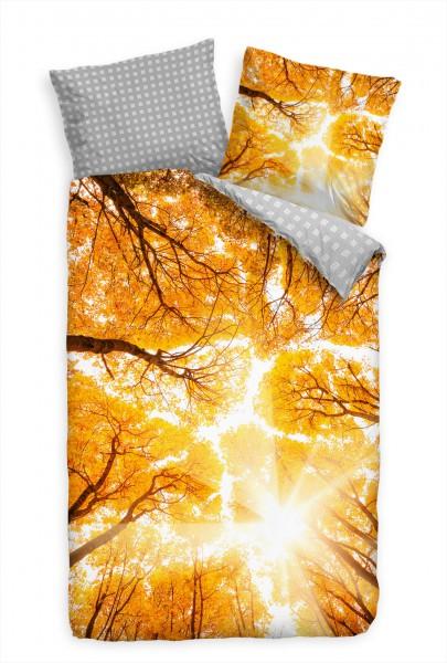 "Wald Herbst Gold Gelb B""ume Bettwäsche Set 135x200 cm + 80x80cm Atmungsaktiv"