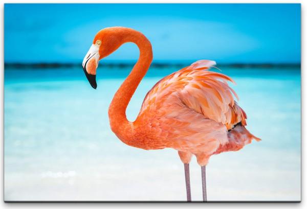 Flamingo im Meer Wandbild in verschiedenen Größen
