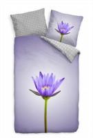 Feilchen Violett Lila Blte Makro Bettwäsche Set 135x200 cm + 80x80cm  Atmungsaktiv