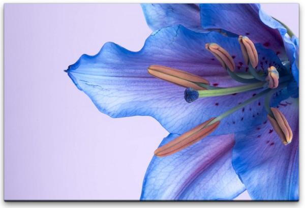 blaue Blumenblüte Wandbild in verschiedenen Größen