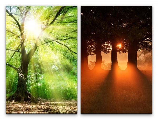 2 Bilder je 60x90cm Sonnenschein Baumkrone Bäume Natur Stille warmes Licht Heilsam