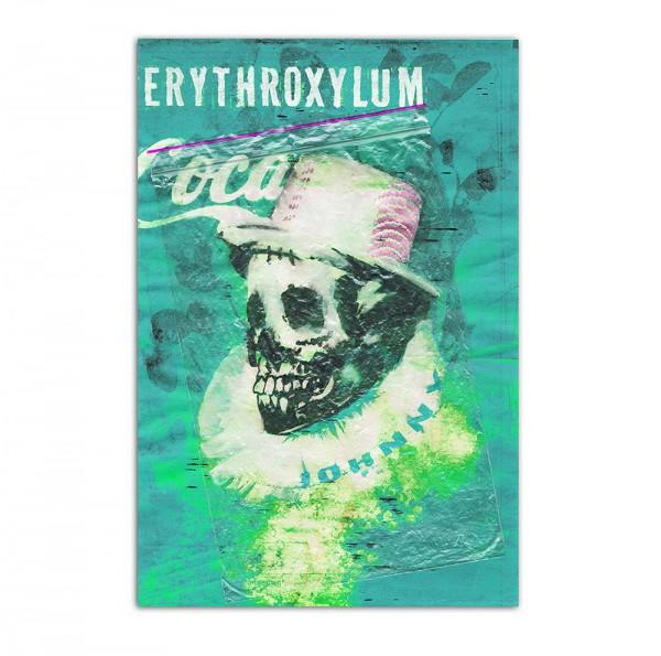 Erythroxylum Coca 2, Art-Poster, 61x91cm
